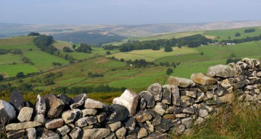 Down from the moors