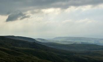 Murky Moors