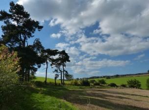 Munslow fields