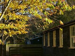 Great war hut