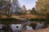 Sher Brook crossing