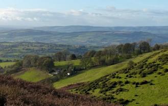 Hillside settlement