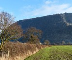 A last look at Breidden Hill