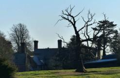 Old chimneys
