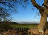 A view of the Wrekin