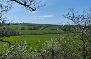 Green towards Wenlock