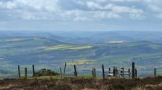 Sunshine fields on Wenlock Edge