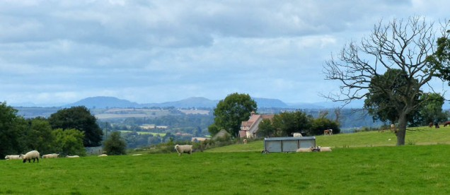 View to the Breiddens