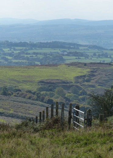 Edge of the hill
