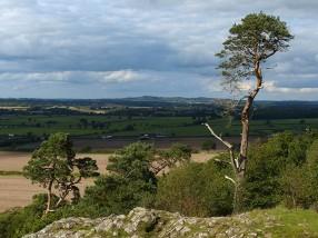 Hawkstone hills