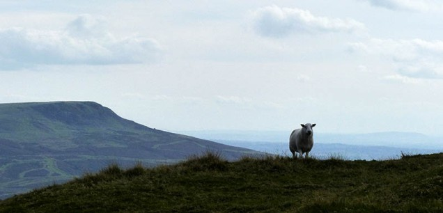 This is my hill