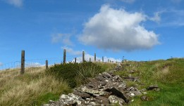 Old wall and fence