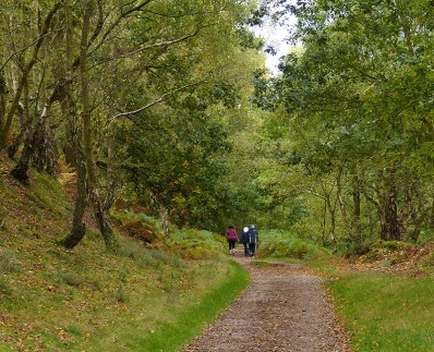 Onwards along the trackbed
