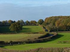 Winding lane - and kite...