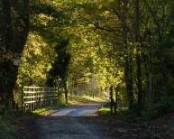Severn valley trackbed