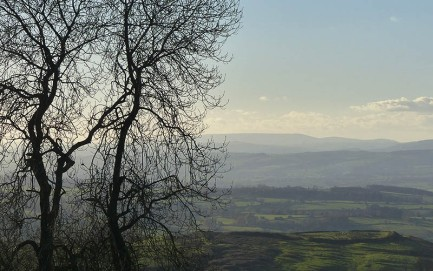 View to Radnor Forest