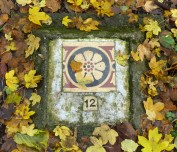 A tile amongst the leaves