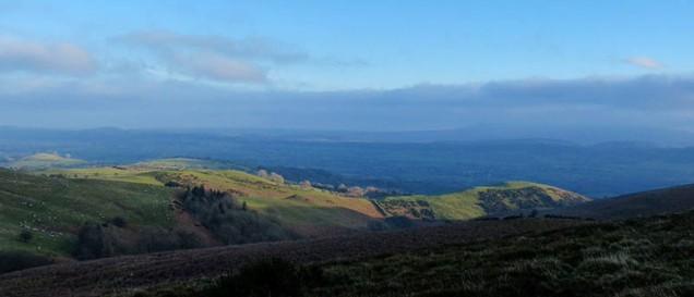 Sunlight on the ridge