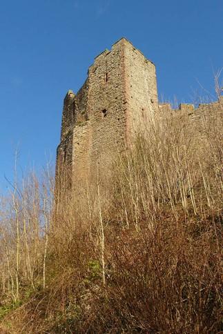 Below the castle