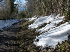 Drifts in the lane
