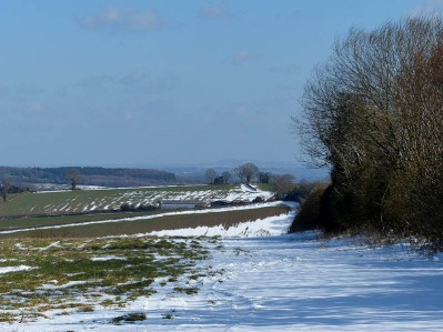 Snow on the fields