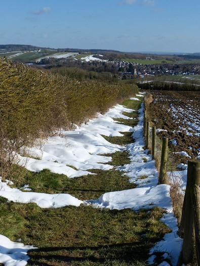 Down towards Wenlock