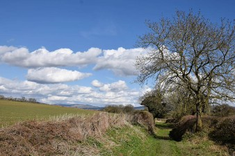 The lane to Starvecrow