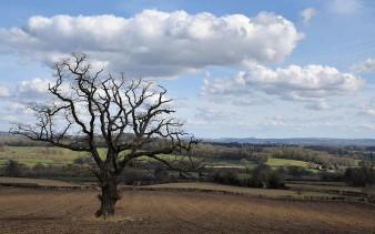 Northern Herefordshire