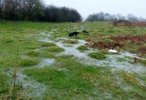 Wet underfoot