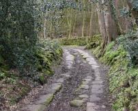 Paved way