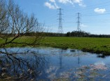 Pond and pylons