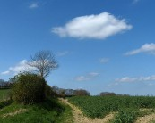 Wenlock Edge sky
