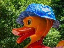 "Duck 9 - ""Paddlington Duck"""