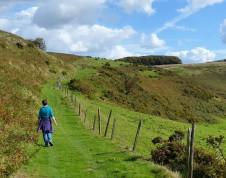 Hillside path ...