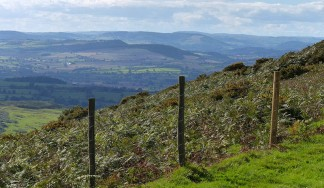 View to Corvedale