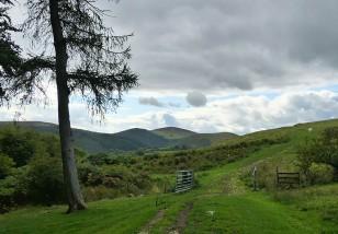 Gateway to Mucklewick