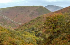 ... to autumnal hillsides