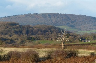 And another - view to the Wrekin