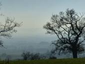 A hazy day
