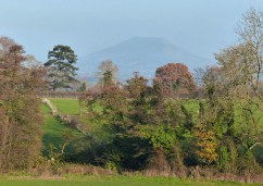 Wrekin in the haze