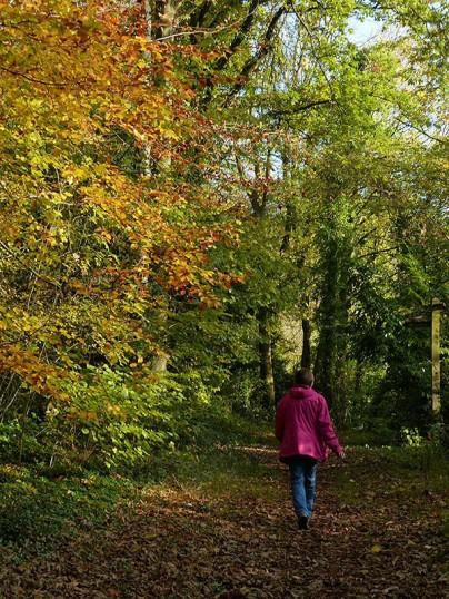 Woodland...