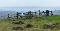 Gate on the ridge