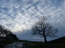 A wintry sky