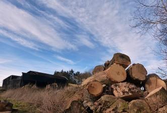 Perkley firewood