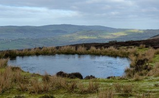 Pool and Stiperstones