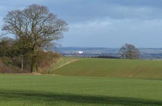 Pound Lane view