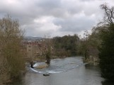 Downstream from Ludford Bridge