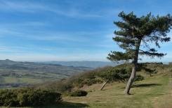 A windy hilltop