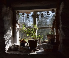 Squatter's cottage window