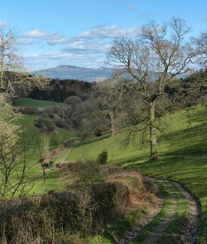 Down towards Richard's Castle